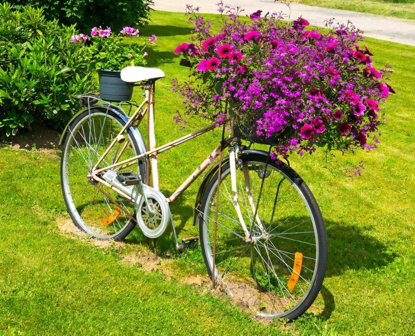 x bike ferrara orari - photo#16